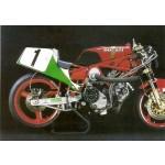 Ducati F1 Daytona Rahmen