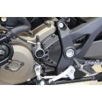 Kettenrad-Abdeckung am Motor Ducati Monster 1200